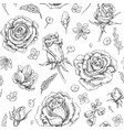 flowers sketch pattern vector image
