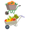 carriages carts loaded with vegetables carriage vector image vector image