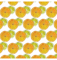 Orange and Lime fresh slices vector image