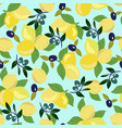 pattern with lemon olives and olive branch vector image