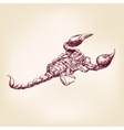Scorpion hand drawn llustration realistic sketch vector image vector image