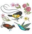 small hummingbird bird paradise daffodil and vector image vector image