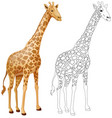 animal outline for giraffe vector image vector image