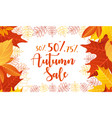 autumn sale lettering cartoon vector image