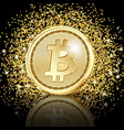 bitcoin golden coins on glitter dust background vector image vector image