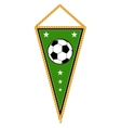 Green soccer pennant isolated white vector image vector image