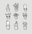 hand drawn cute cactus trees doodle set vector image