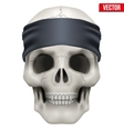 Human skull with gangster bandana on head vector image vector image
