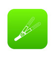 pregnancy tests icon green vector image