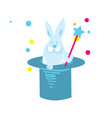 rabbit in hat isolated icon vector image