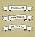 set trendy vintage retro styled ribbons vector image