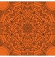 Spider web ornamental background vector image