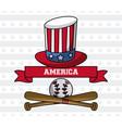 usa baseball sport game vector image vector image