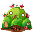 ant farm with many ants in garden vector image vector image
