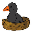 bacrow in nest on white background vector image vector image