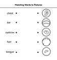 match words to pictures black and white vector image vector image