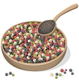 Mixed peppercorns on wooden plate and spoon vector image vector image