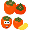 persimmon with leaves whole and slices of vector image