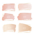 set of gold pink brush stroke frame vector image