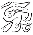felt tip brush line vector image