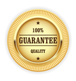 Golden medal - 100 quality guarantee symbol vector image vector image