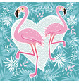 pink flamingo couple cool flamingo decorati vector image