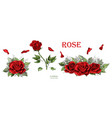 red roses hand drawn color set rose flowers vector image