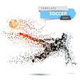soccer football - dot with glare vector image vector image