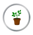 Plant icon of for web and vector image