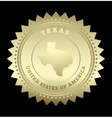 Gold star label Texas vector image
