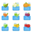 Baby Food Infographic Set Of Stickers vector image vector image