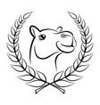 camel win vector image vector image