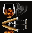 Cognac and cigar with smoke vector image vector image
