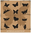 Nature various symbolical butterflies set vector image