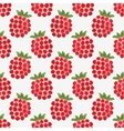 Seamless watercolor pattern with funny raspberries vector image