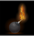 burning bomb icon vector image