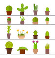 cartoon cactus plant in pots vector image vector image