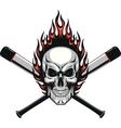 Skull baseball evil vector image vector image