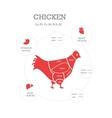 Butcher shop concept Chicken vector image