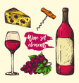 colourful sketch wine elements vector image vector image