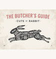 cut meat set poster butcher diagram scheme vector image vector image