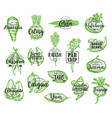 exotic vegetable silhouettes with lettering vector image vector image