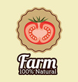Farm design over beige background vector image