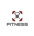 kettlebell and barbell fitness vector image vector image