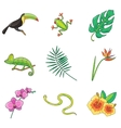 Tropical Plants and Animals Icon vector image