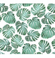tropical seamless pattern monstera vector image vector image