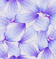 Watercolor Seamless pattern with Purple flower vector image vector image