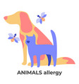 dog and cat fur bee stings allergy animal