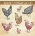 farm animals engraving set1 chickens and roosters vector image