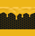 honey dripping with honeycomb background vector image